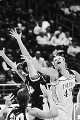 1.basket.jpg