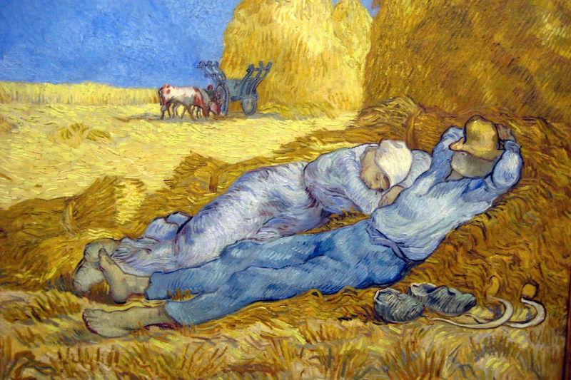 Vincent et moi de michael rubbo