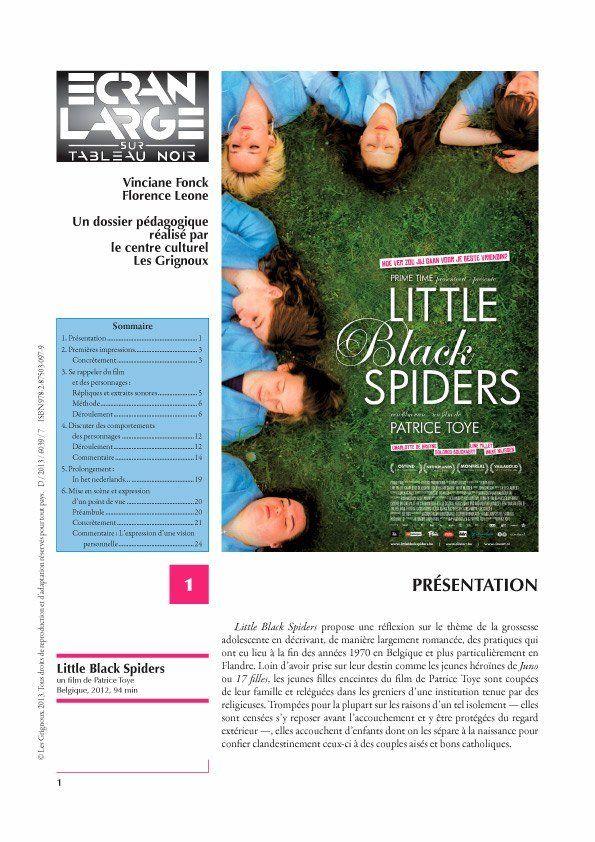 affiche du dossier Little Black Spiders