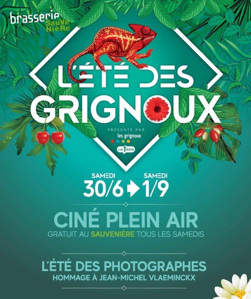 affiche du film Ciné plein air