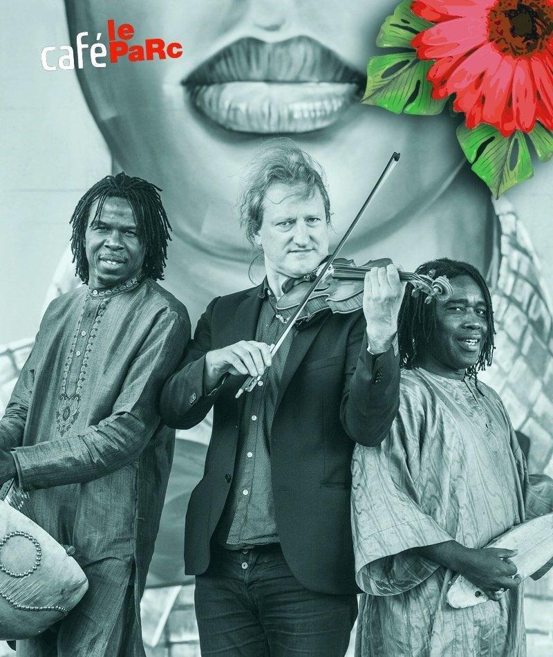affiche du film Concert d'été : Tamala