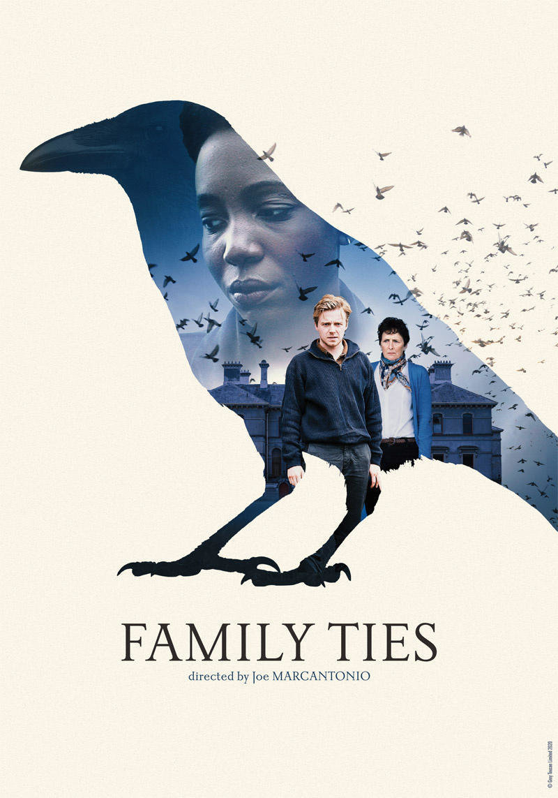 affiche du film Family Ties