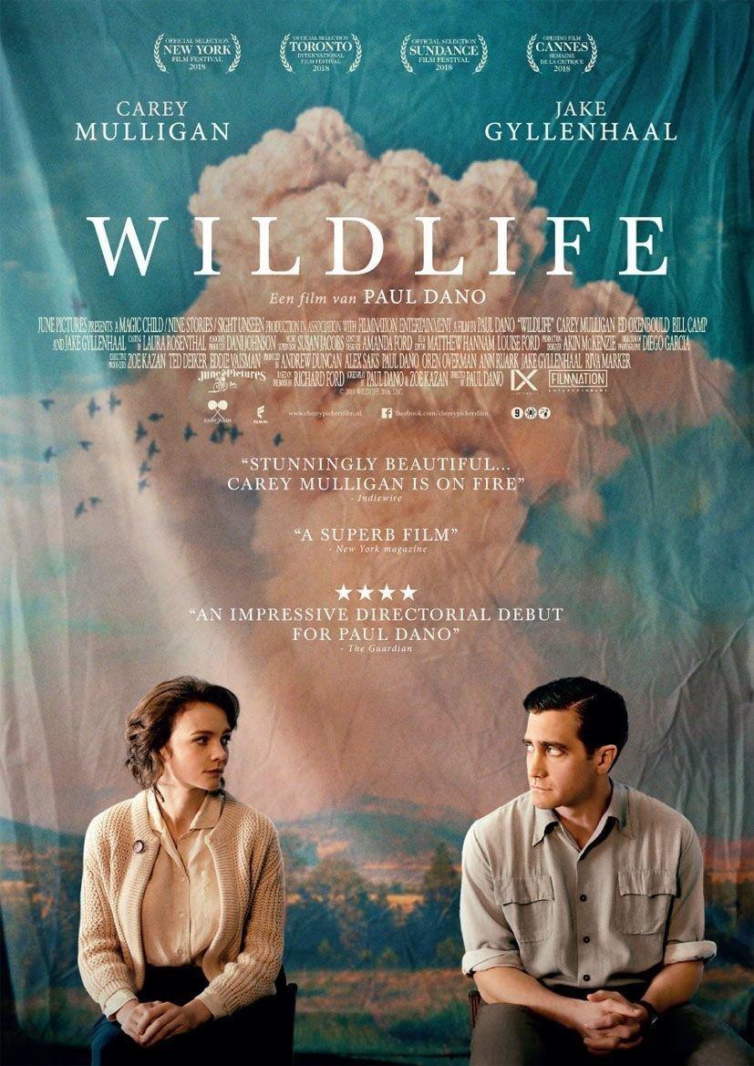 affiche du film Wildlife - Une saison ardente
