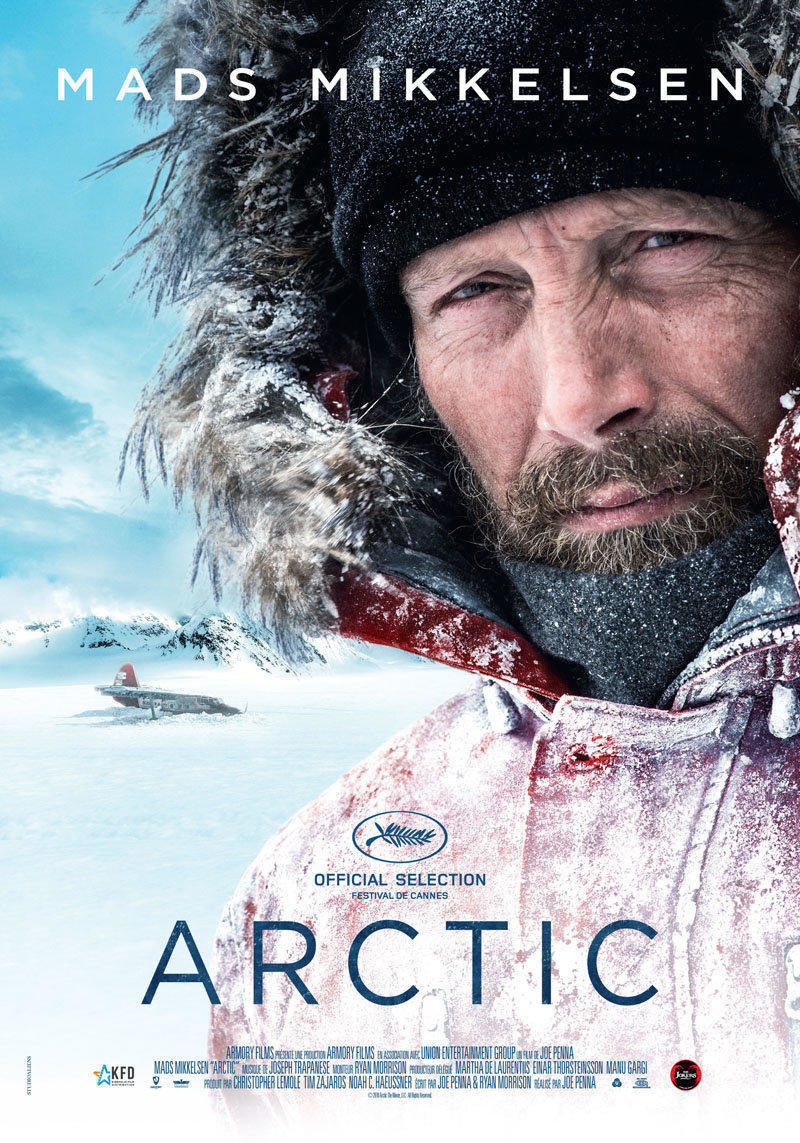 affiche du film Arctic
